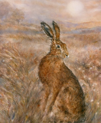 Moonlit Hare by Gary Benfield