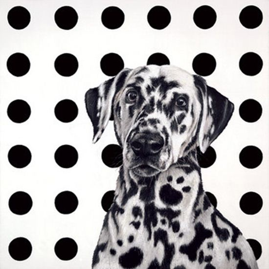 Spot The Dog by Hayley Goodhead (paper)