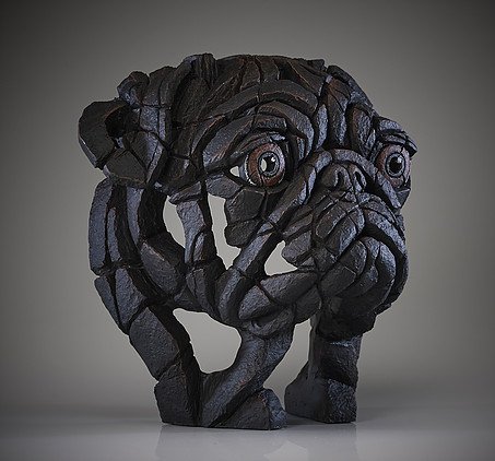 Pug Bust (Black) 3 by Matt Buckley of Edge Sculptures