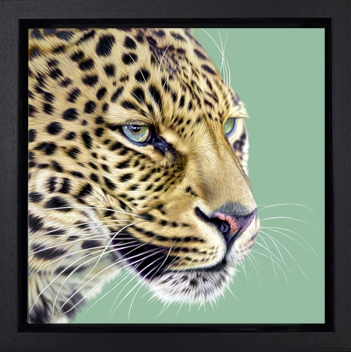 Game Face by Darryn Eggleton Framed