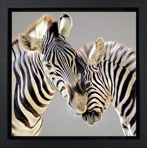 Tender Touch by Darryn Eggleton Framed
