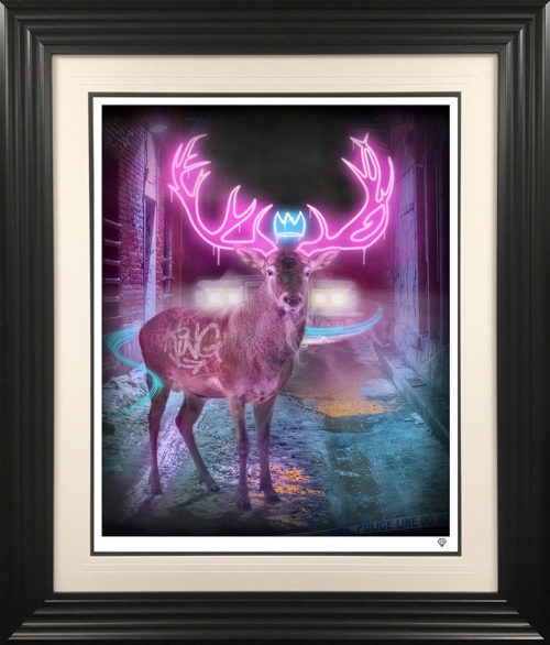 Deer In The Headlights framed by JJ Adams