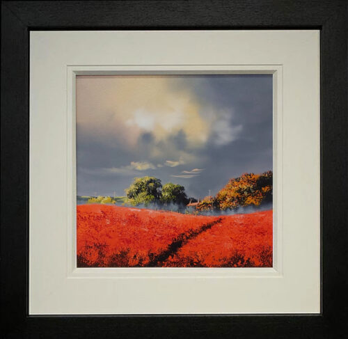 Poppy Skies by Allan Morgan